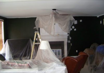 Dining Room Interior Custom Painting (5)