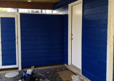 Lewes Exterior Painting Beach House (16)